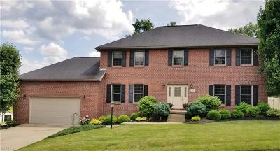 Vienna Single Family Home For Sale: 1610 Greenmont Hills Drive