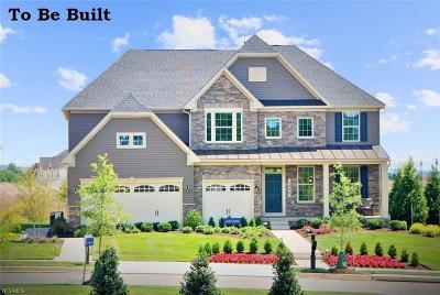 Single Family Home For Sale: 3074 Crosscreek Drive