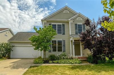 Solon Single Family Home For Sale: 28854 N Village Lane