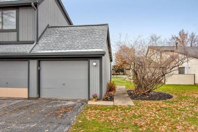 Willoughby Condo/Townhouse Active Under Contract: 34942 N Turtle Trail #C