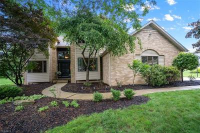 Boardman Single Family Home Active Under Contract: 587 Presidential Drive