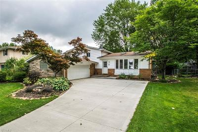 North Olmsted Single Family Home For Sale: 6641 Nancy Drive