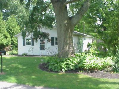 Chippewa Lake Single Family Home For Sale: 98 Clovercliff Drive