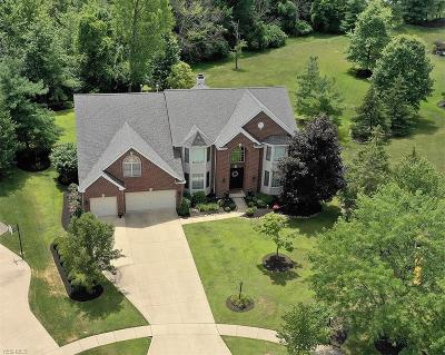 Strongsville Single Family Home For Sale: 12649 Fieldstone Point