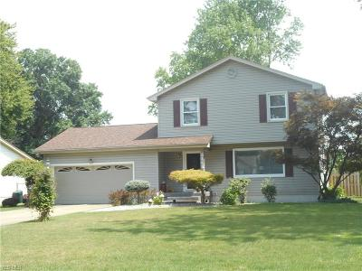 Canfield Single Family Home Active Under Contract: 3441 Johnson Farm Drive