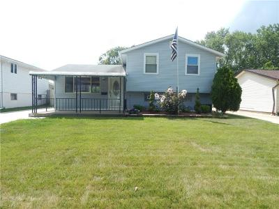 Single Family Home For Sale: 16395 Southway Drive