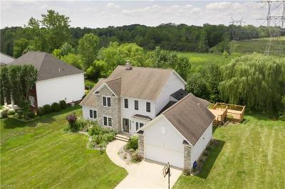 Solon Single Family Home For Sale: 7110 Witch Hazel Lane