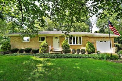 Kent Single Family Home Active Under Contract: 333 Eckwood Drive
