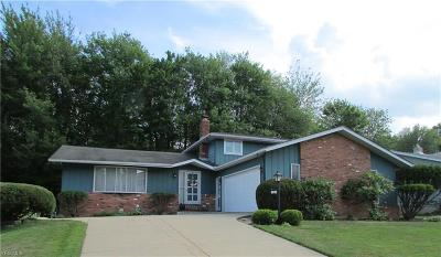Seven Hills Single Family Home For Sale: 160 Panorama Drive