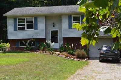 Muskingum County Single Family Home For Sale: 2955 Deer Path