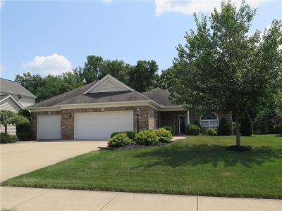 North Ridgeville Single Family Home For Sale: 37531 Terrell Drive