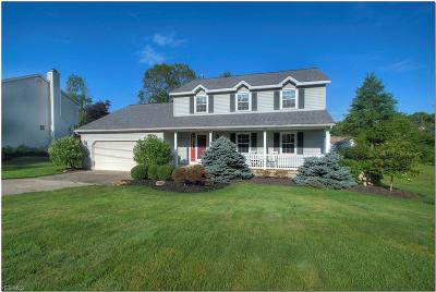 Sagamore Hills Single Family Home For Sale: 7386 Holzhauer Road