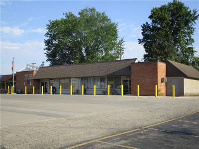 Andover Commercial For Sale: 255 E Main Street