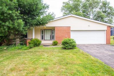 Beachwood Single Family Home For Sale: 2505 Deborah Drive