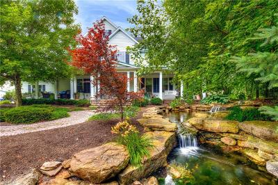 Chagrin Falls Single Family Home For Sale: 10881 Stafford Road