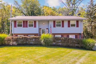 South Euclid Single Family Home For Sale: 4600 Anderson Road