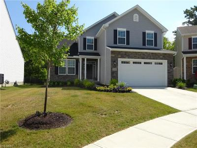 Strongsville Single Family Home For Sale: 12688 Edgeview Lane