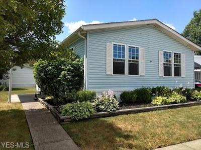Olmsted Township Single Family Home For Sale: 4 Piccolo Place