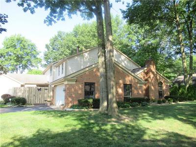 Canfield Condo/Townhouse For Sale: 176 Talsman Drive #A