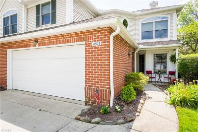 Condo/Townhouse Active Under Contract: 2803 Wyndgate Court #19