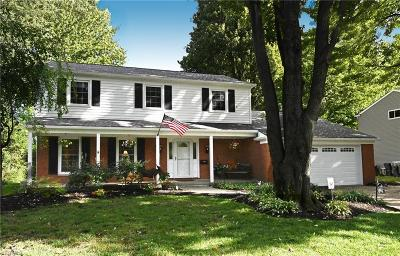 Single Family Home For Sale: 30962 Clinton Drive