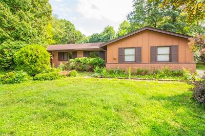 Northfield Single Family Home Active Under Contract: 7211 Natalie Boulevard