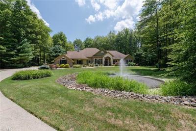 Aurora Single Family Home For Sale: 2816 Remington Point