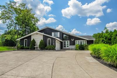 North Royalton Single Family Home For Sale: 10500 State Road