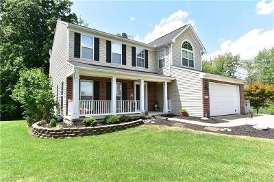 Copley Single Family Home For Sale: 276 Brookledge Lane