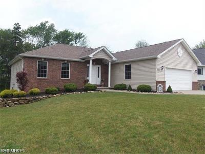 North Royalton Single Family Home For Sale: Tbd Albion Road