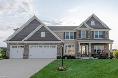 Strongsville Single Family Home For Sale: 22322 Pinnacle Point