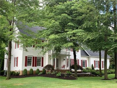 Chagrin Falls Single Family Home For Sale: 17418 Lakesedge Trail