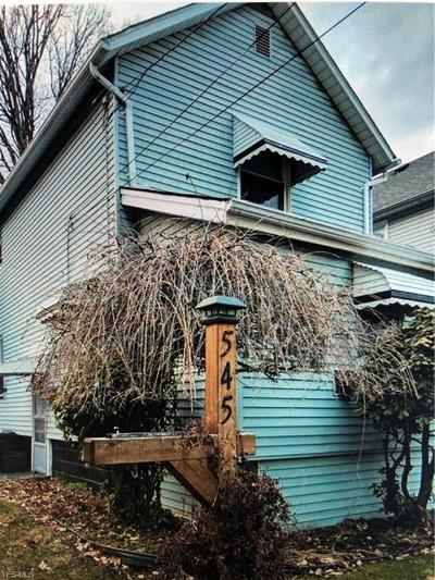 Struthers Single Family Home For Sale: 545 6th Street