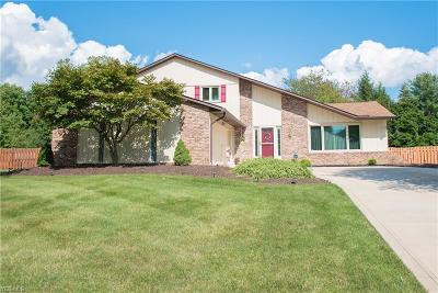 North Royalton Single Family Home For Sale: 9580 Applewood Drive