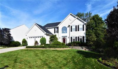 Copley Single Family Home For Sale: 5233 Fairington Avenue