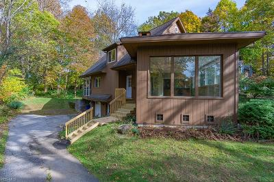 Kent Single Family Home For Sale: 1225 Fairview Drive