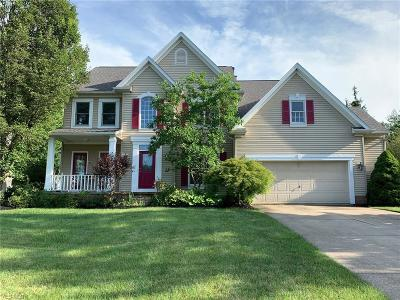 Twinsburg Single Family Home For Sale: 2848 Sikes Lane