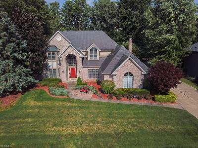 Westlake Single Family Home For Sale: 3155 Royal Oak Court