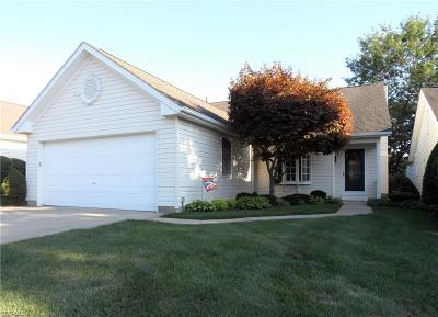 High Point Single Family Home For Sale: 18203 Drake Road