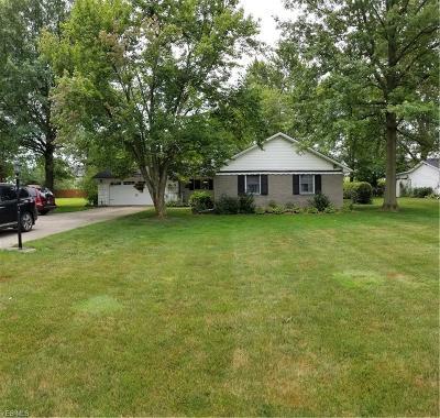 Avon Single Family Home For Sale: 33329 Schwartz Road