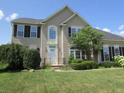 Copley Single Family Home For Sale: 4737 Quincy Drive