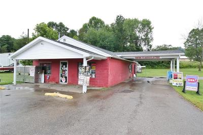Perry County Commercial For Sale: 5230 Ceramic Road