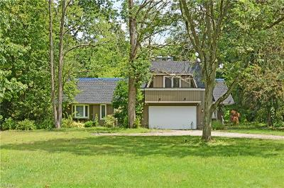 Chagrin Falls Single Family Home For Sale: 17549 Merry Oaks Trail