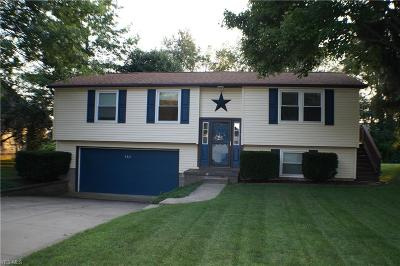 Kent Single Family Home Active Under Contract: 982 Kevin Drive