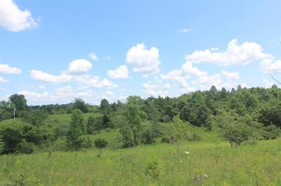 Muskingum County Residential Lots & Land For Sale: Union Hill Road