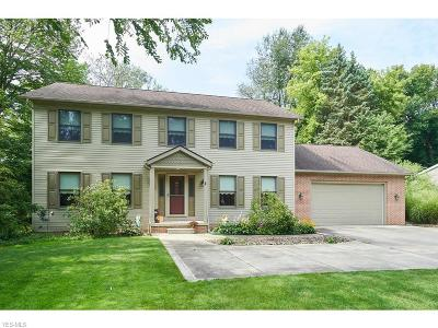 Northfield Single Family Home For Sale: 10614 Valley View Road