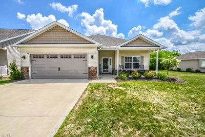 Seville Single Family Home Active Under Contract: 9229 Woodland Blue Circle