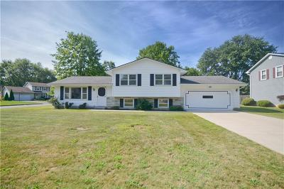 Youngstown Single Family Home For Sale: 1401 Fredericksburg Drive