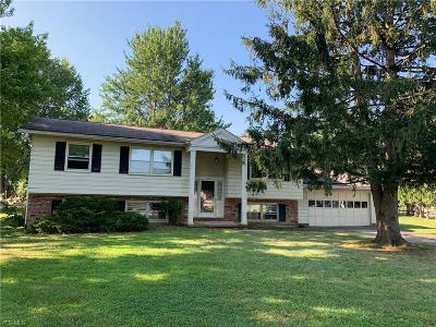 Painesville OH Single Family Home For Sale: $174,900