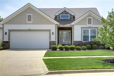 Strongsville Single Family Home For Sale: 22263 Olde Creek Trail